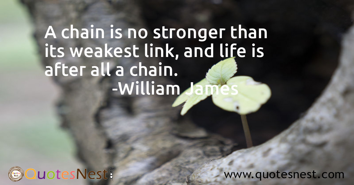 A chain is no stronger than its weakest link, and life is after all a chain.